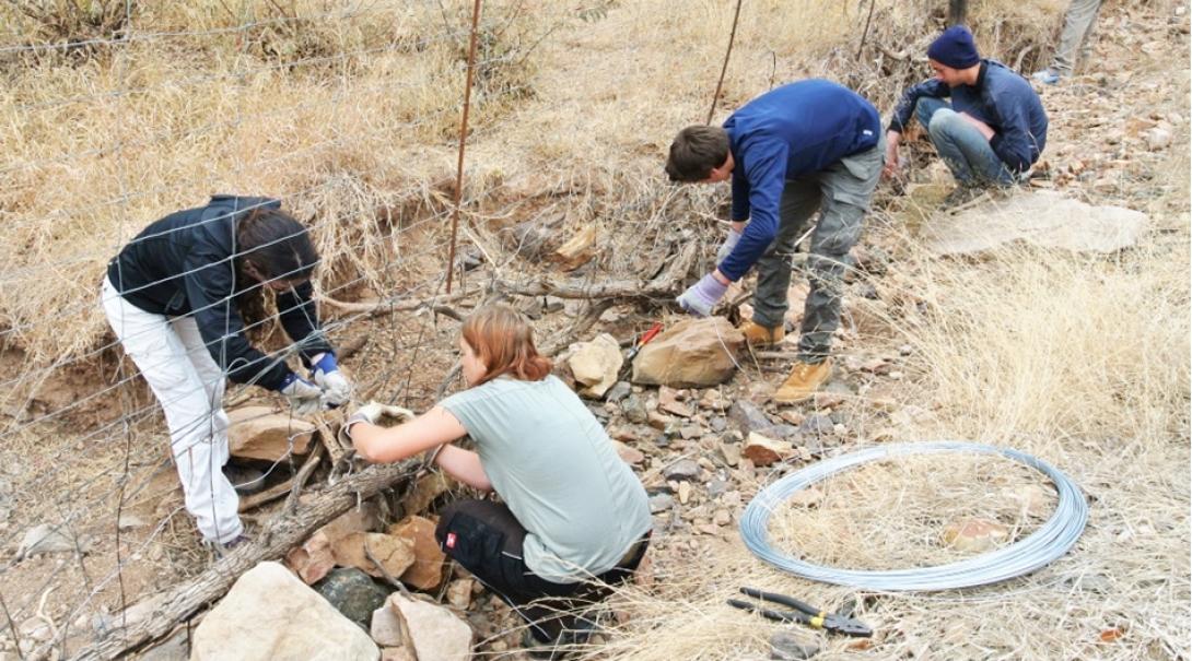 ボツワナの自然保護区でフェンスの修繕活動に取り組む環境保護ボランティアたち